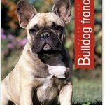 libro bulldog frances adiestramiento